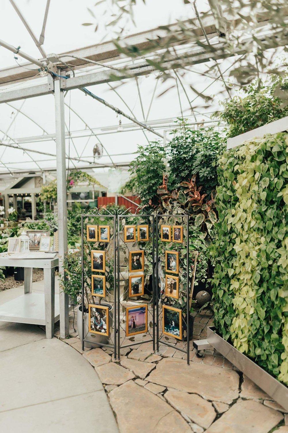 Madyson plant wall.jpg