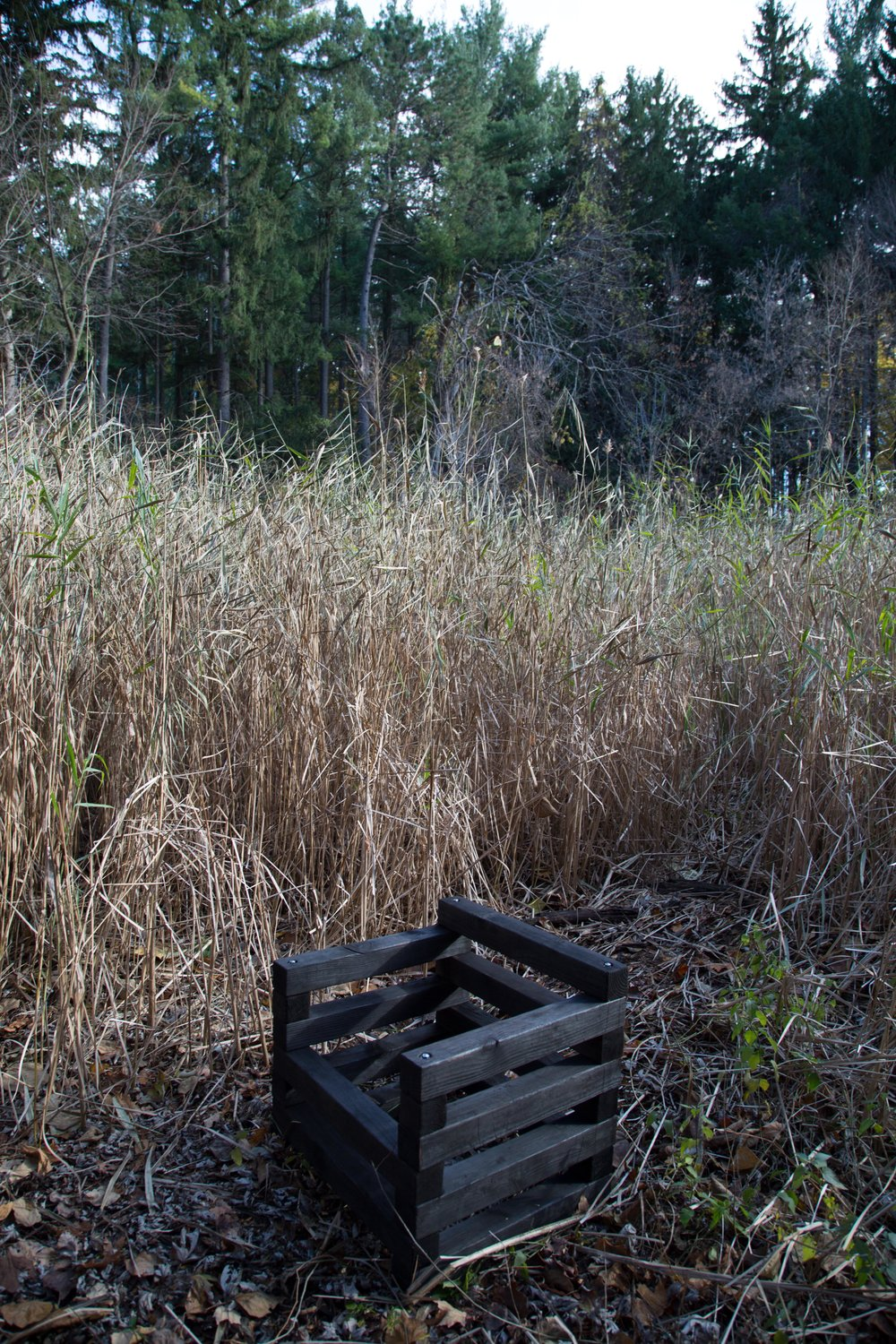 charred chair in the woods-2.jpg