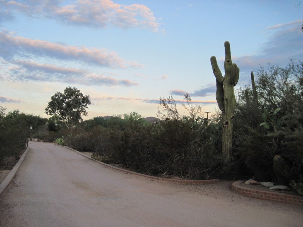 Rolfing resources images - desert driveway