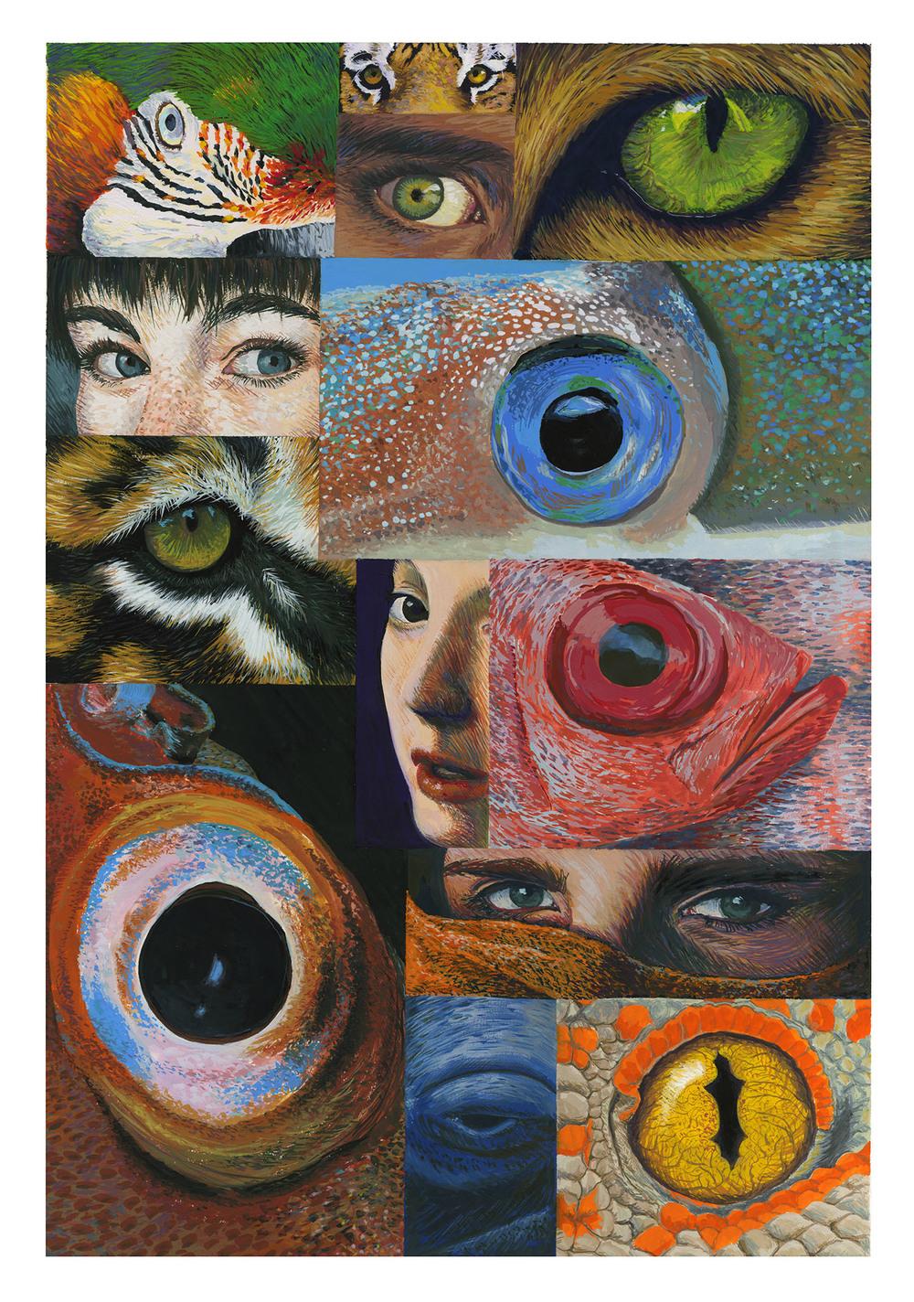 eyeballs c.jpg