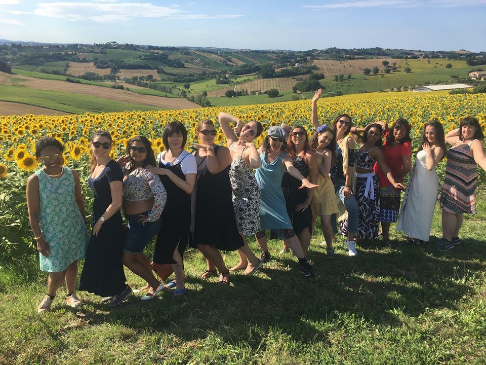 Sunflower fields, Marche
