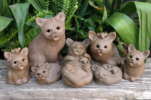 7_cat_group_outside_1.jpeg