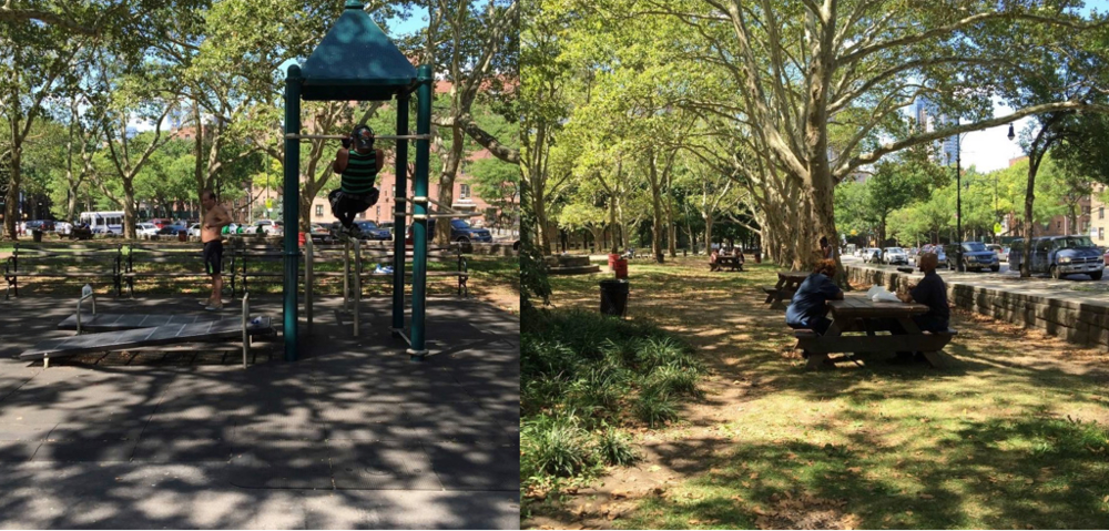 Workout equipment and picnic areas in the park's northwest corner are heavily-used and well-loved — we need to make sure these spaces can meet the demands placed on them.