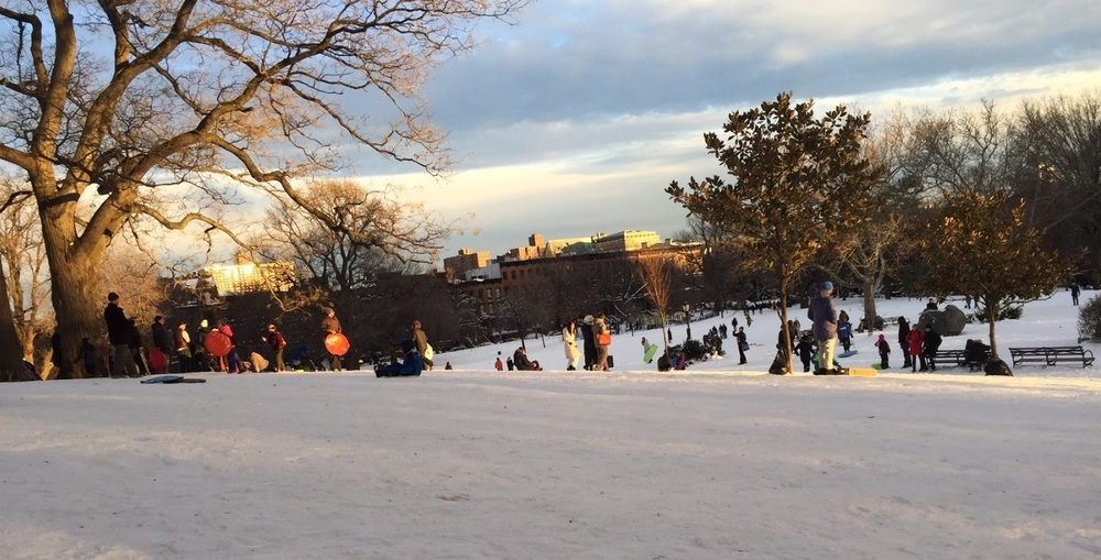 Sledders on the hill north of the tennis courts on January 24, 2016.