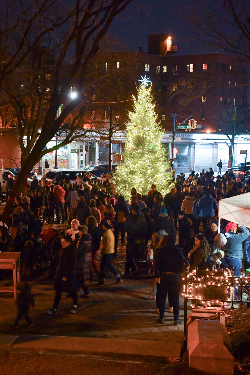 3rd Annual Fort Greene Park Tree Lighting presented by the Fort Greene Park Conservancy and Myrtle Avenue Brooklyn Partnership, sponsored by Apple Bank. photo credit: Daniel Avila, NYC Parks