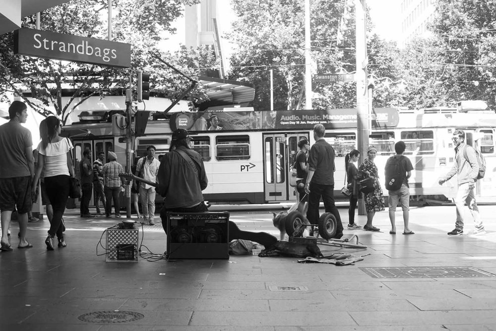 Hack & Dog Bourke St Mall, Melbourne 25.12.2016 – Day 305/366