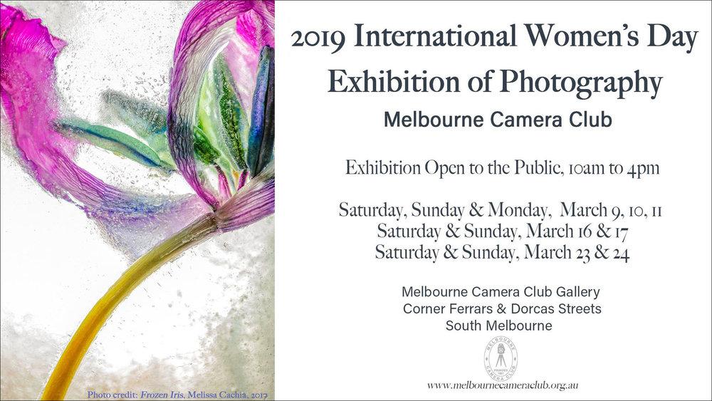 MCC IWD Group Exhibition.jpg