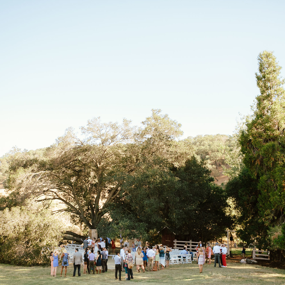 Napa Valley Vacaville Wedding Photographer - Hannah & Stephen - The Gathering Season x weareleoandkat 031.jpg