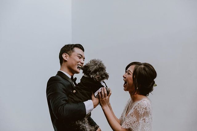 Did you check out our new blog post? A whole lotta this cuteness and a whole lotta party. Link in our bio to see more of Sam and Mike's beautiful wedding at Millwick! . . . #millwick #la #losangeles #artsdistrict #wedding #weekendvibes #sunday #weddingday #bridestyle #makeportraits #brideandgroom #destinationwedding #weddingphotography #urbanwedding #indiewedding #liveauthentic #kissthebride #firstlook #westcoastwedding #loveandwildhearts #belovedstories