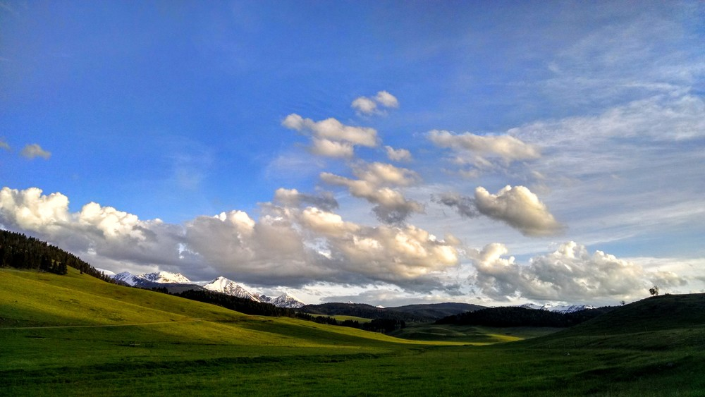 The day after we got home, we ran to the closest mountains. This WindowsXP desktop background looking pic was taken 20 min from our house.
