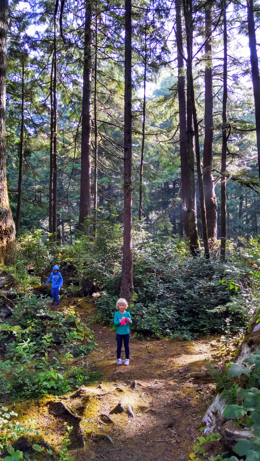 """If you camp at Kalaloch campground (which you should), reserve a spot on the """"A"""" loop. It's the outermost loop and you'll have your own private """"Endor"""" to play in."""