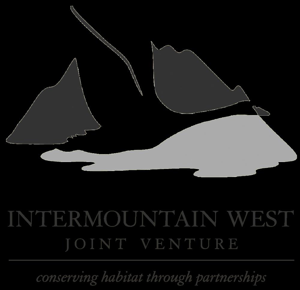 IWJV_Logo-AF-vector-bw.png