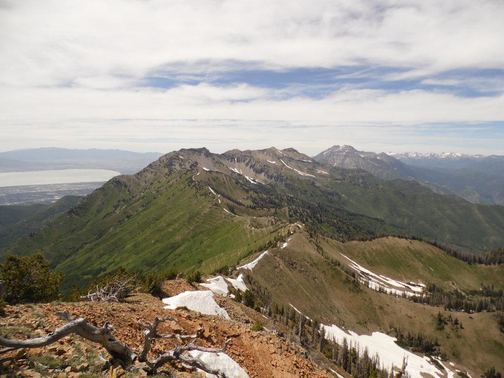 Shingle Mill Peak, Utah