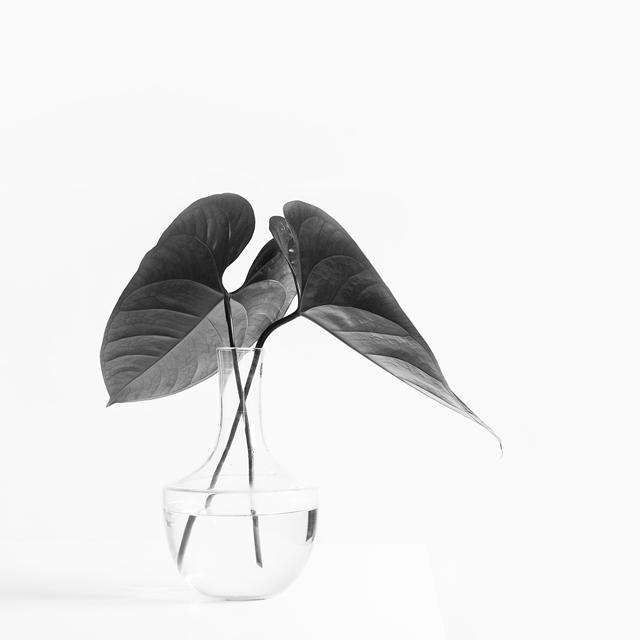 decluttering-minimalism.jpg