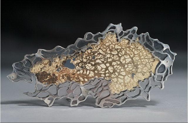 lichen encasemtn pendant.jpg