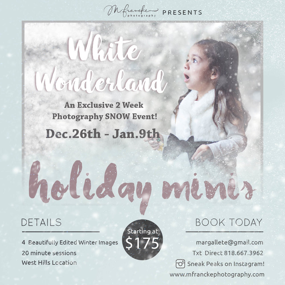Winter Wonderland Mini Flyer.jpg