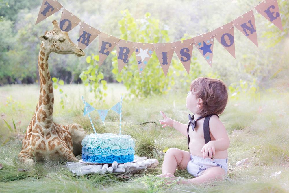 Giraffe-TomerSmashCakeCollection-46.jpg