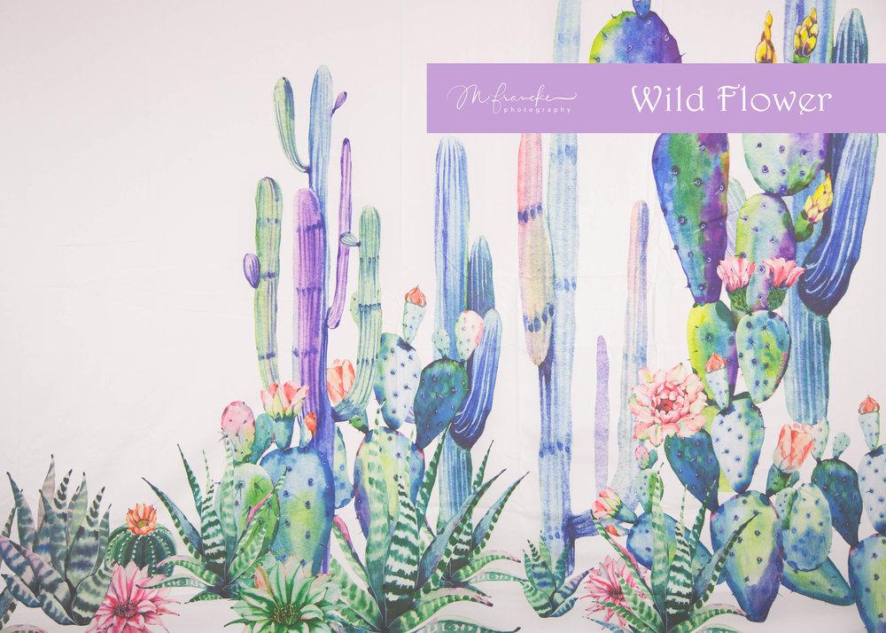 WildFlower-MFranckePhotography.jpg
