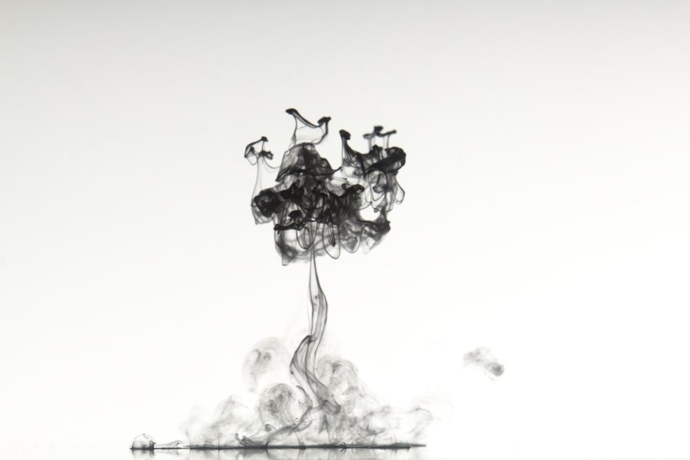 white_water-3.jpg