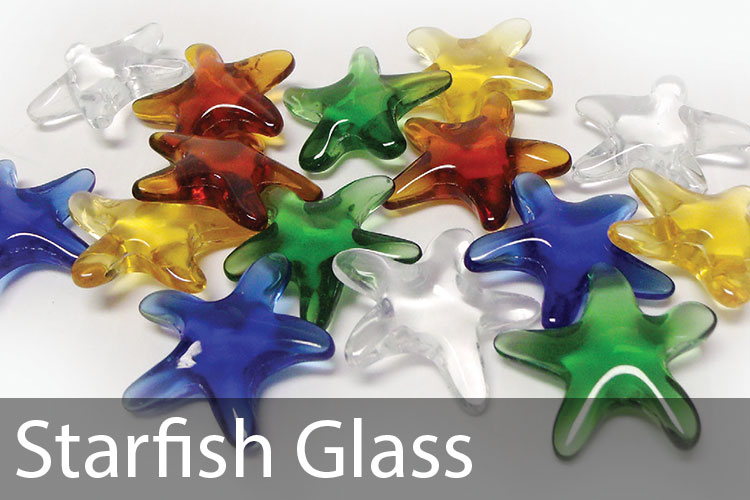 Starfish-Glass.jpg