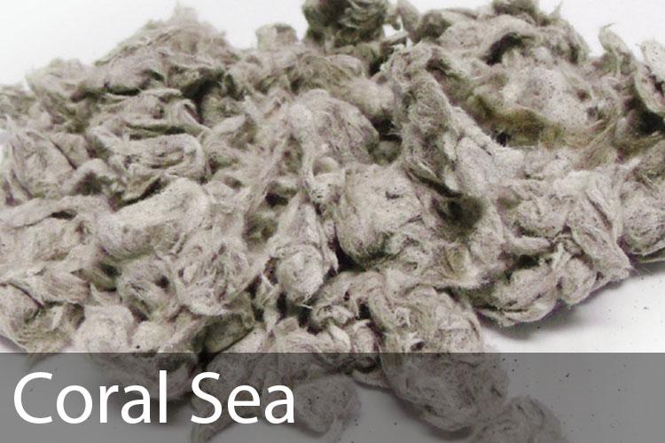 Coral-Sea.jpg