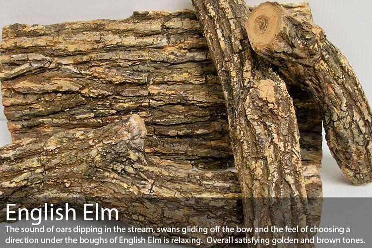 English-Elm.jpg