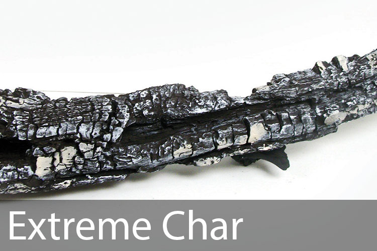 Extreme-Char.jpg