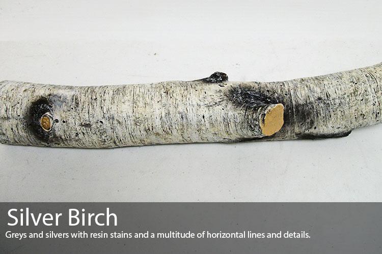 Silver-Birch.jpg