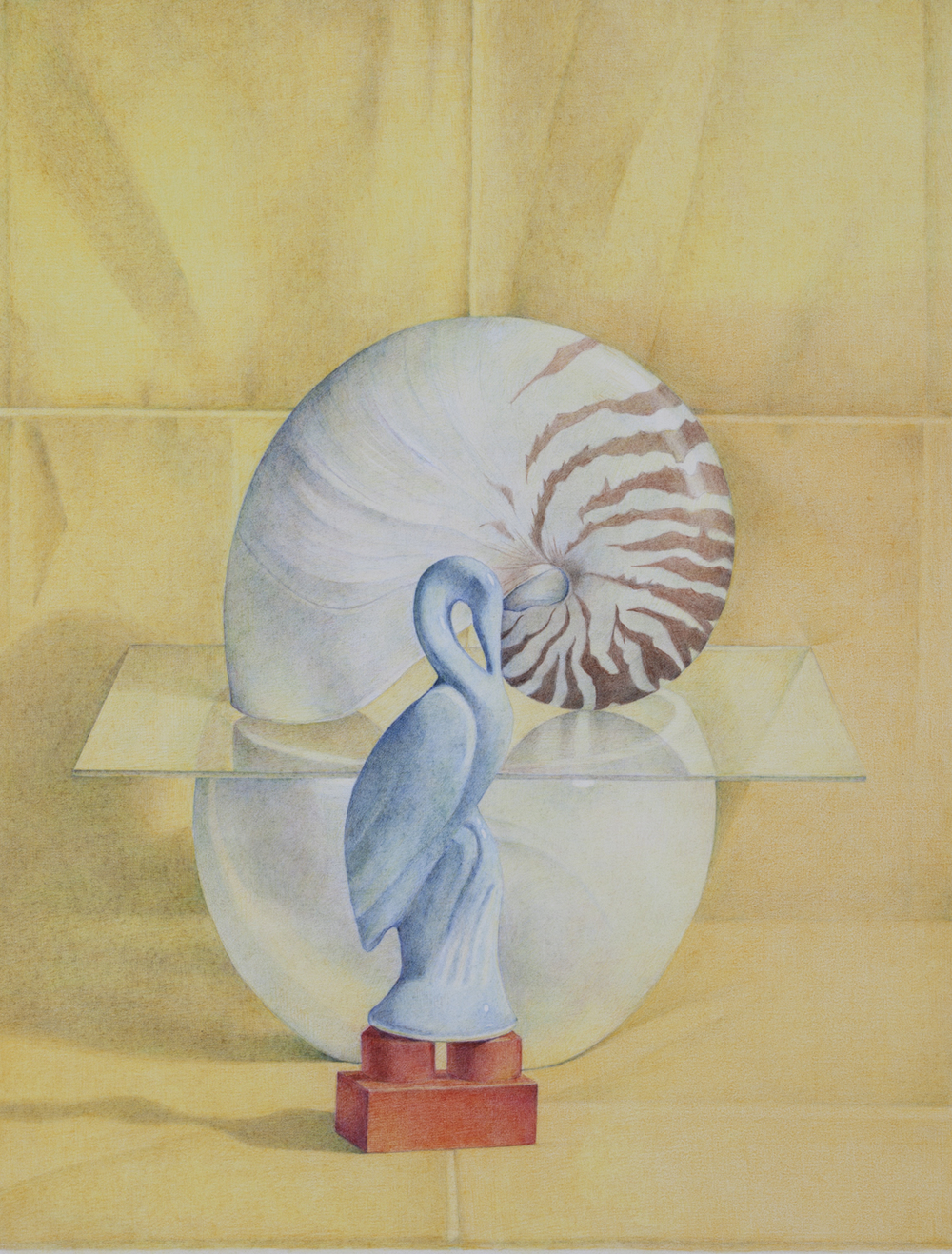 The Nautilus Shell