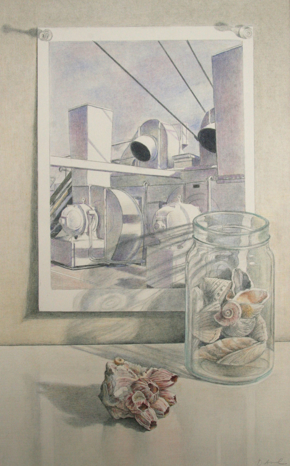 Sheeler with Shells