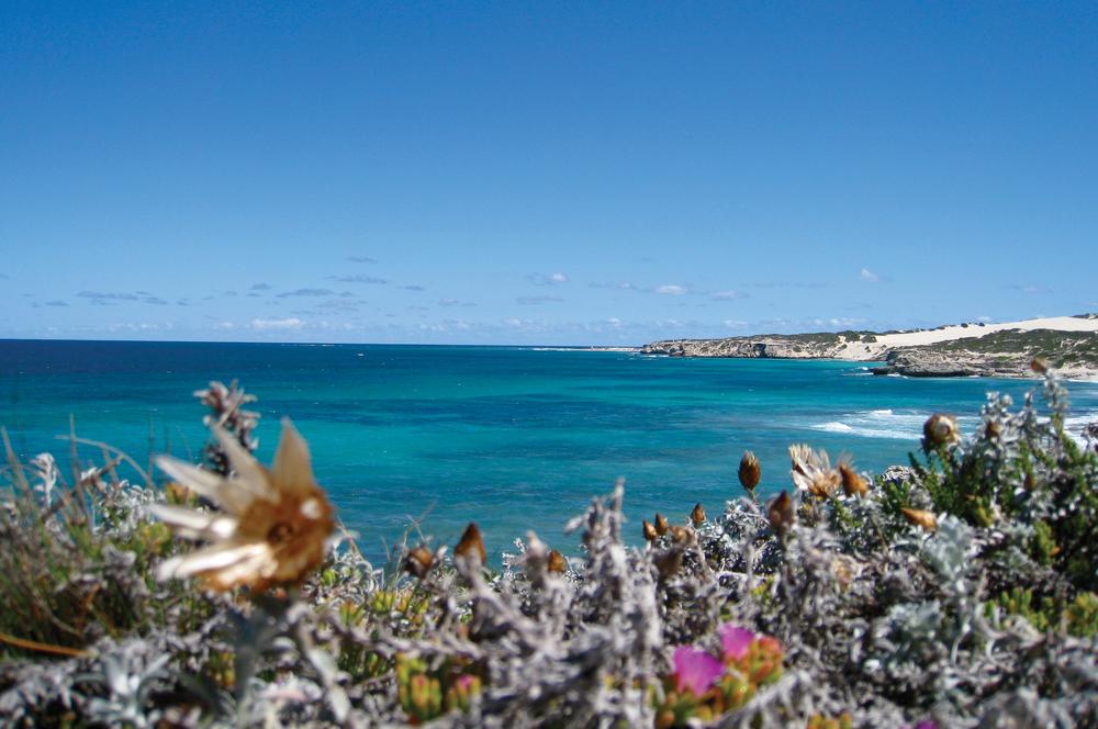 Coastline, turquoise sea.jpg