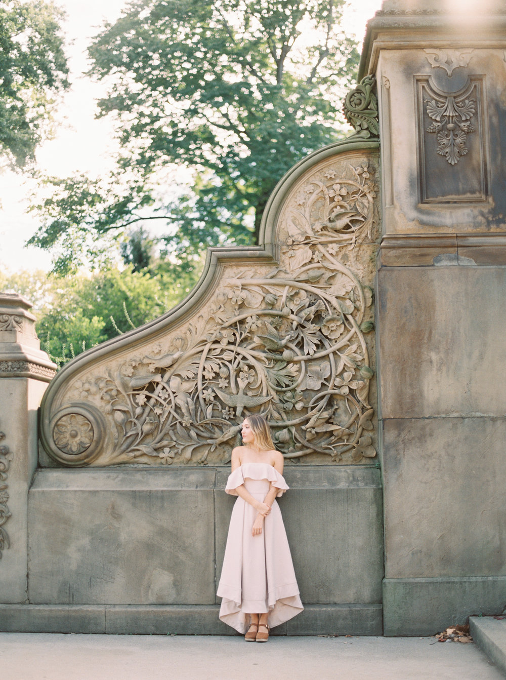 Central Park Fine Art Engagement session
