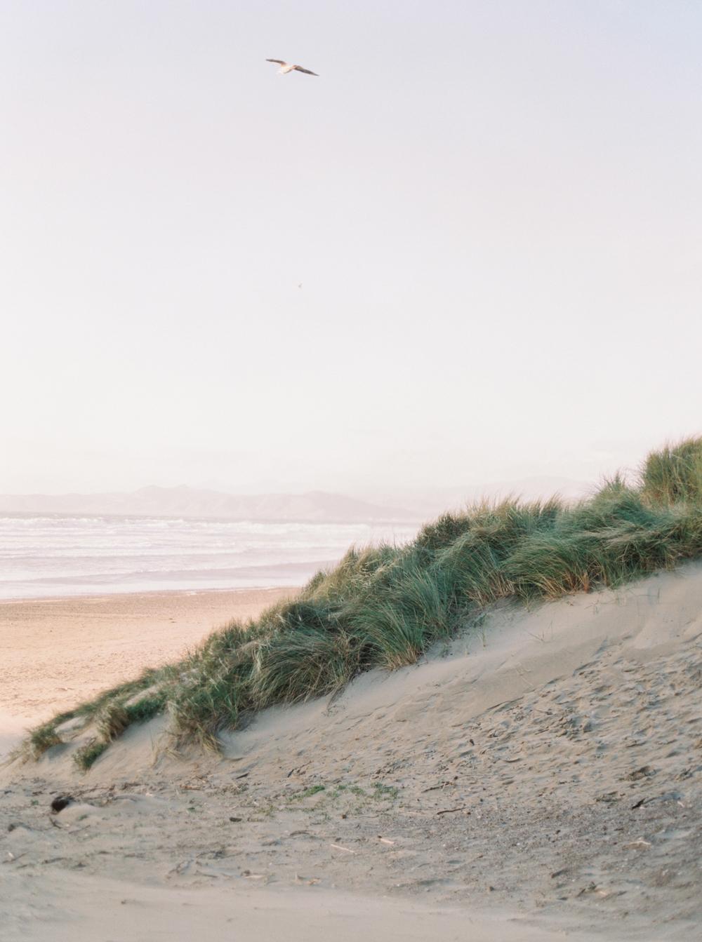 Morro Bay on Film