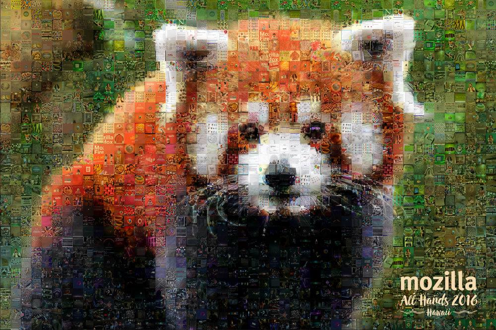 """Mozilla: Small Canvas (6'4"""" x 4'4"""")"""