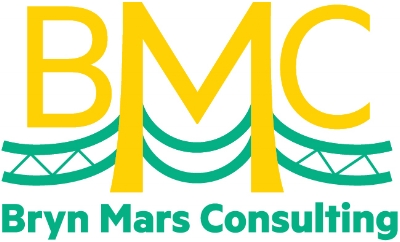 Bryn Mars Consulting