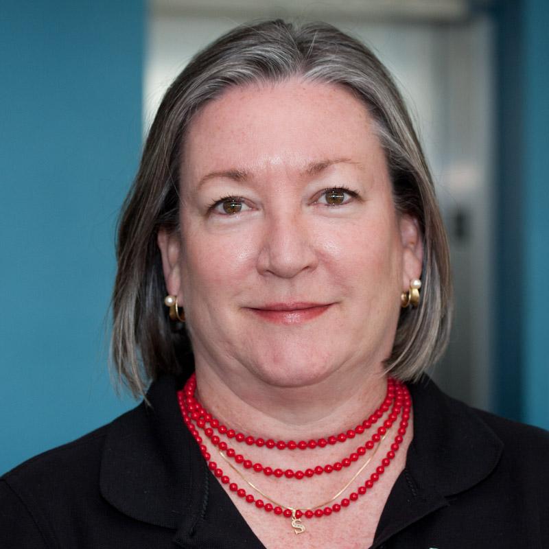 Susan Dickinson, Software Developer