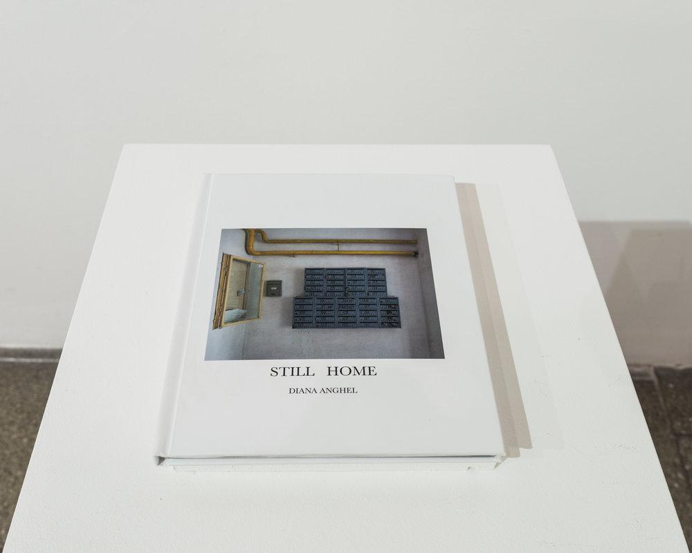 Anghel_Diana_exhibition1.jpg