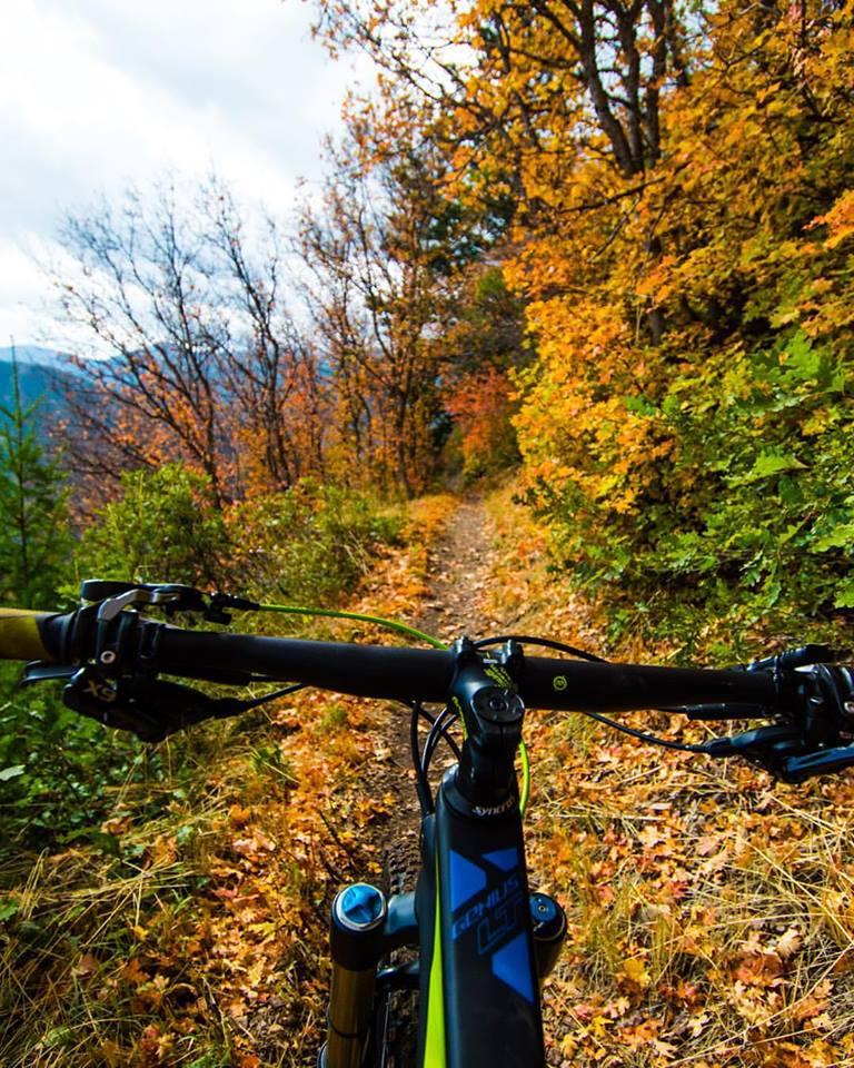 Austin biking 2.jpg
