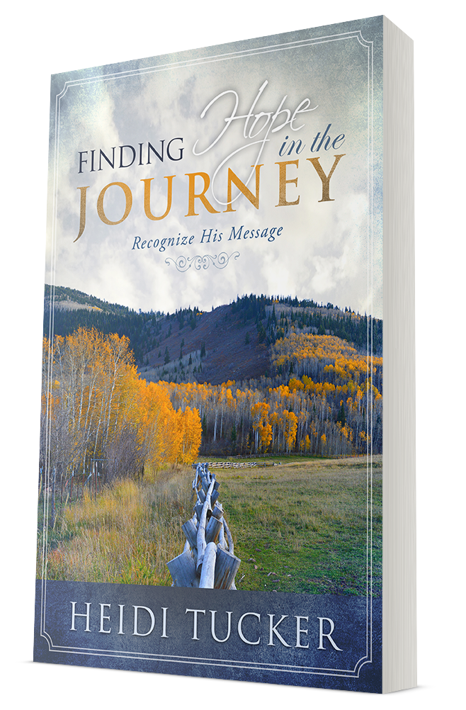 Purchase:   Finding Hope in the Journey