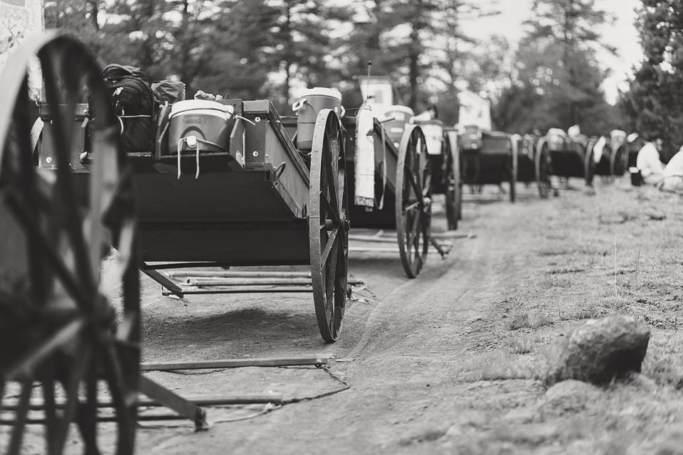 Trek carts.jpg