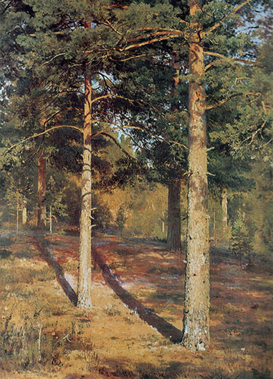 """The Sunlit Pines"" 1886"