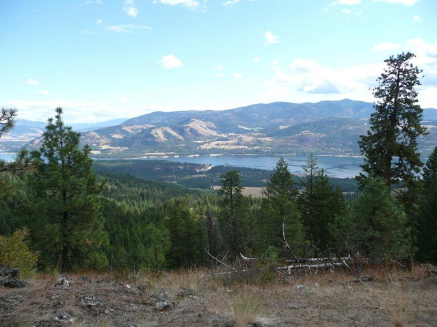 Colville National Forest. Source: USDA National Forest Service https://www.fs.usda.gov/main/colville/about-forest/about-area