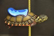 Turtle 2B.JPG