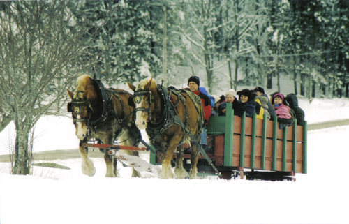 REGISTER TO TAKE A HORSE DRAWN CARRIAGE RIDE WITH YOUR FRIENDS OR FAMILY. Pop up winter fun in mill river park!