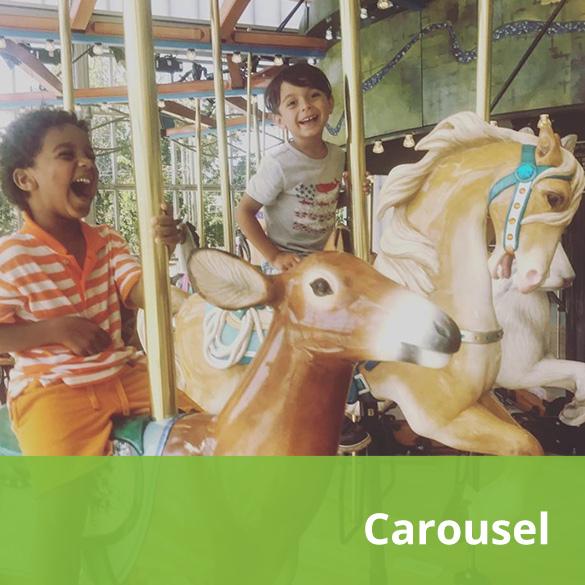 Carousel-mlr.jpg