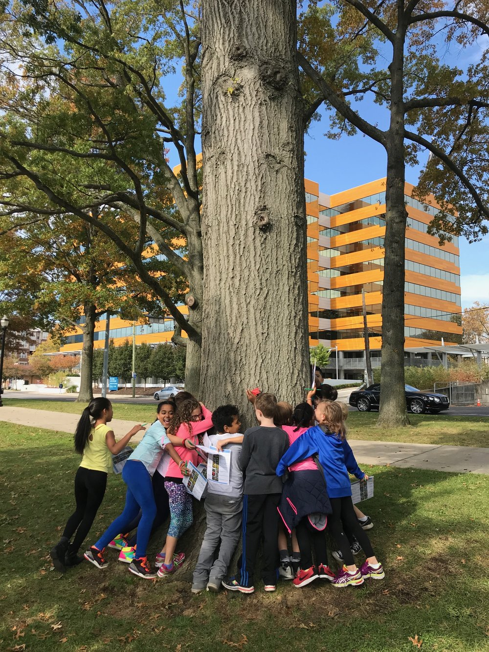 Nature Plants Scavenger Hunt - Our 4th graders found a White Oak!