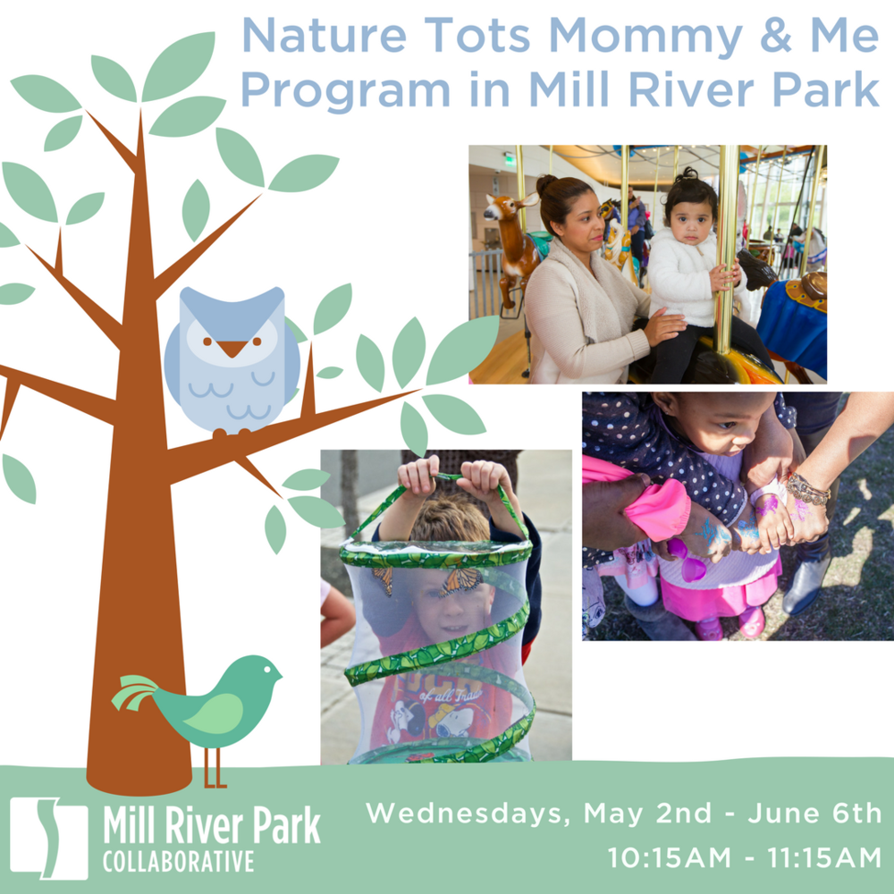 Copy of Nature Tots Mommy & Me Program (3).png