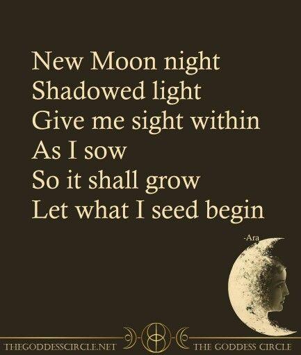 201b42f2b01cc29185fd234a703e5bf4--new-moon-rituals-new-moon-ritual-magic.jpg