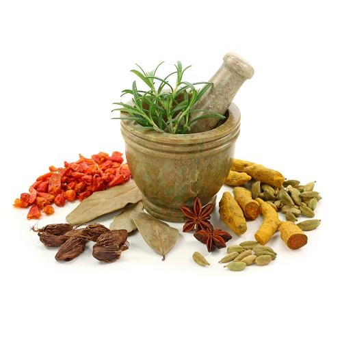 Herbs -