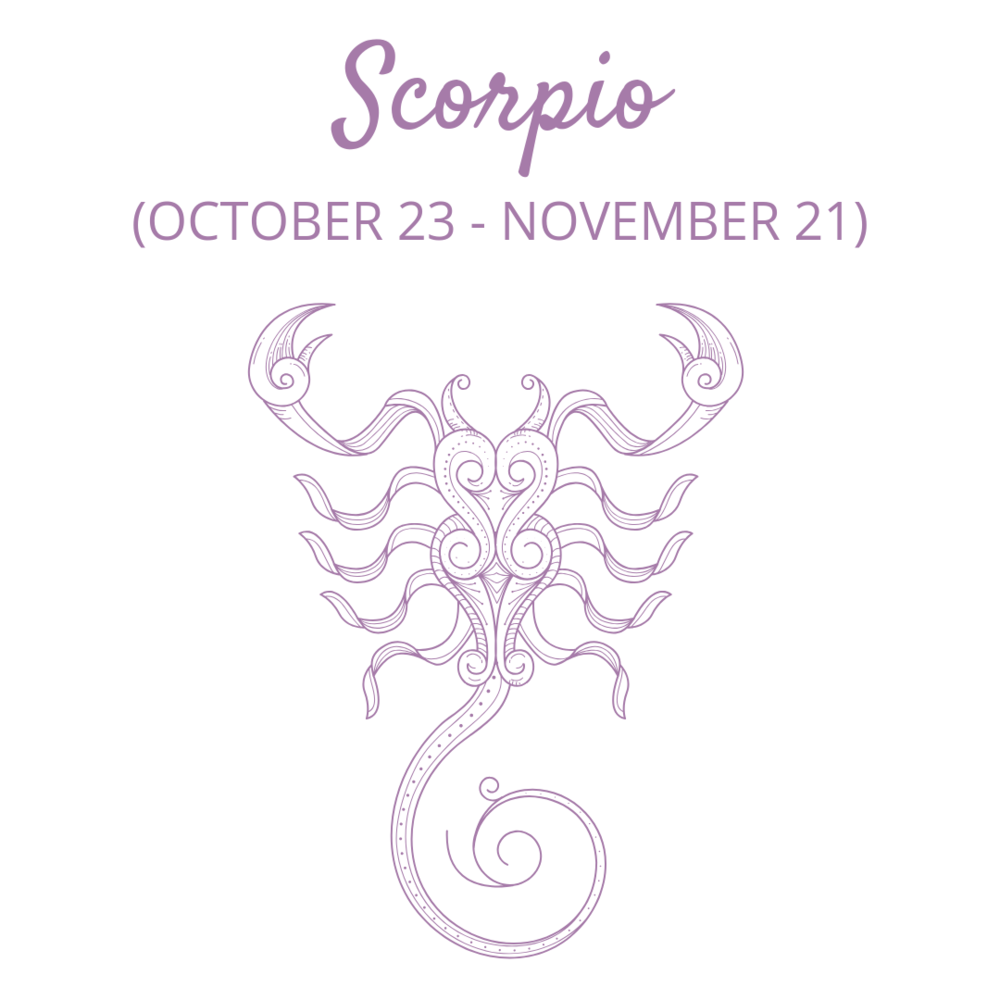 Scorpio — Members Only Content — My Little Magic Shop